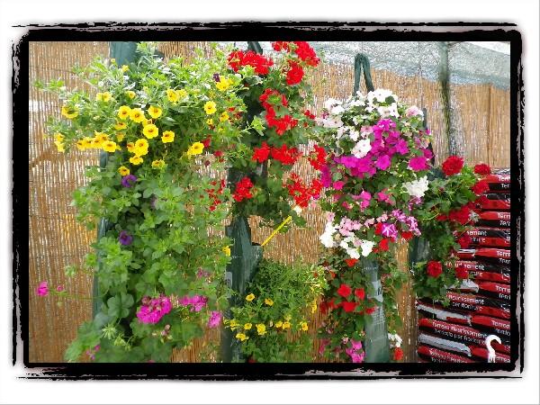 Une entrée accueillante et très fleurie.